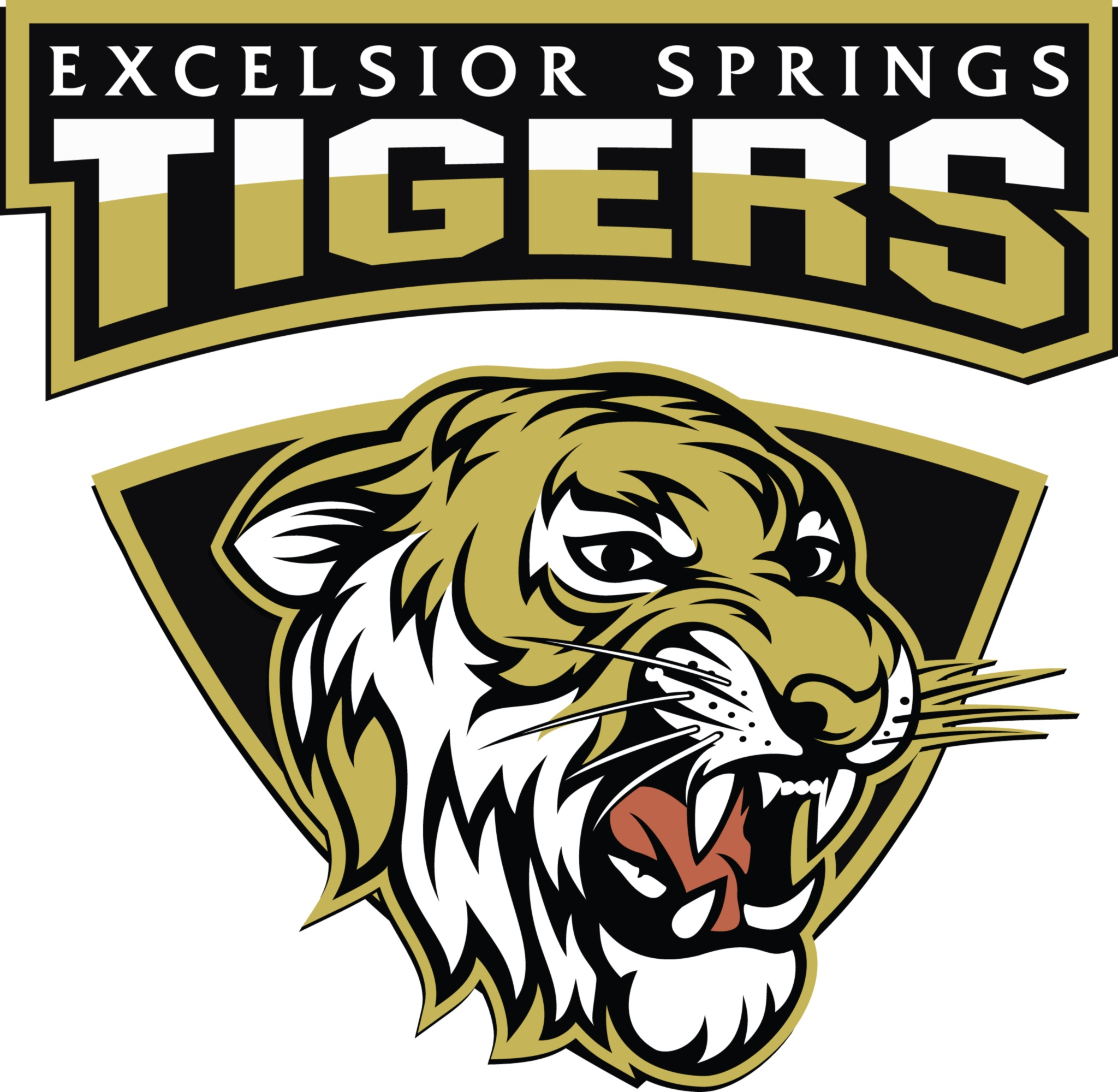 excelsior springs catholic girl personals Girls tennis: sioux city east 5  class 2a region 1 first round tj winners -- singles: no 3 jenna midkiff (6-0, 6-0) no 6 emine timmig (6  kuemper catholic .