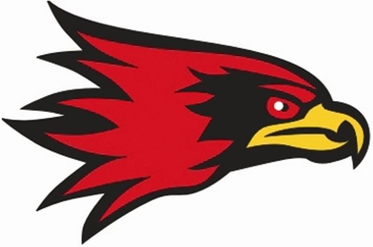 Fighting hawks Logos  logolynxcom