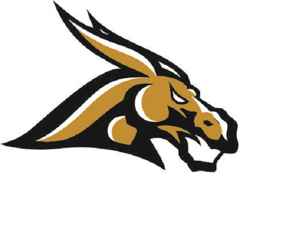 Girls' Logo Lathrop High