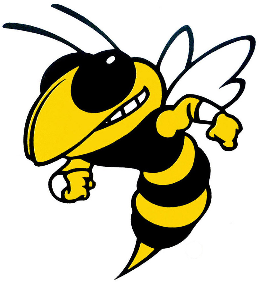 yellow hornets logo - photo #11